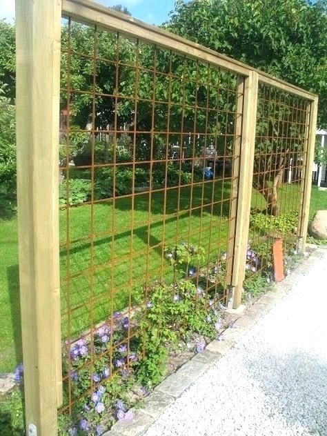 Support Plante Grimpante Inox Pour En Fer La Idees Jardin Amenagement Jardin Jardin Recup