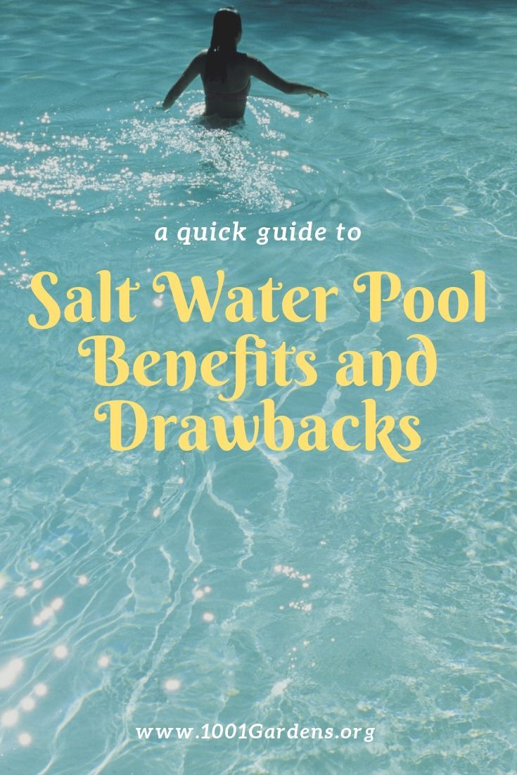 Salt Water Pool Benefits And Drawbacks 1001 Gardens In 2020 Beach Captions Beach Quotes Saltwater Pool