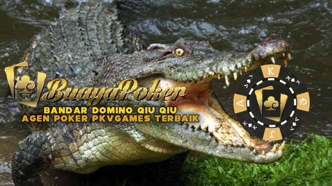 18 Pkv Games Buayapoker Biz Ideas Poker Agen Games