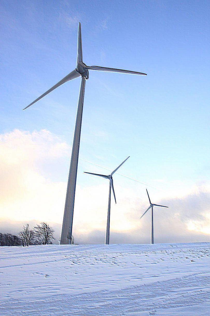 100 Watt Solar Panel Renewable Energy Renewable Sources Of