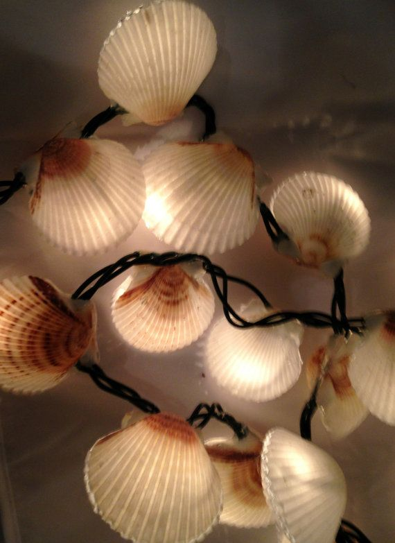 scallop shell christmas lights