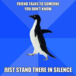 Socially awkward penguin returns