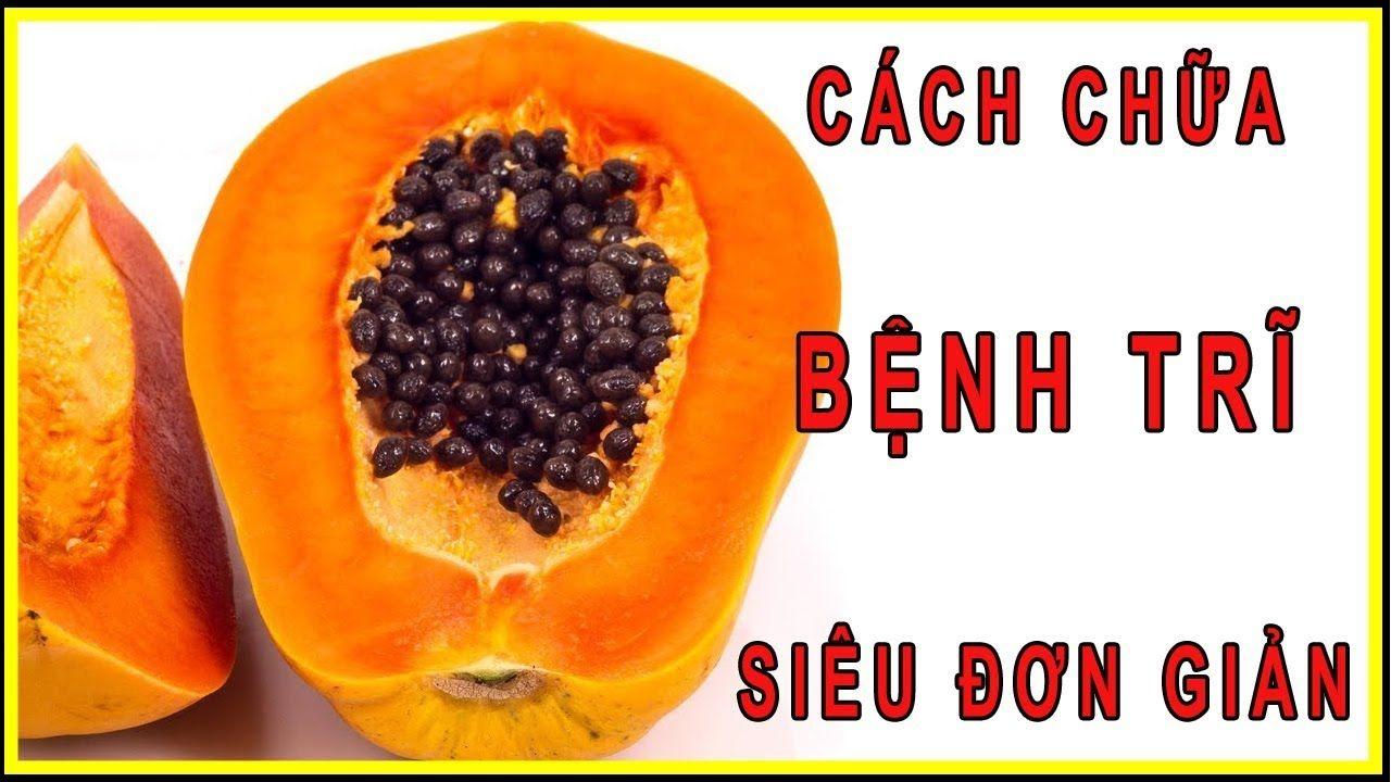 Non-GMO Tropical Fruit Tree Seeds 20 Carica papaya Florida Red Royale Papaya Seeds