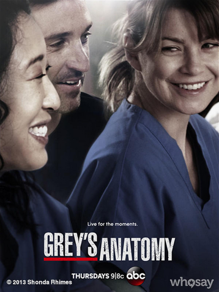 Ver Anatomia De Grey Online O Descargar Greys Anatomy