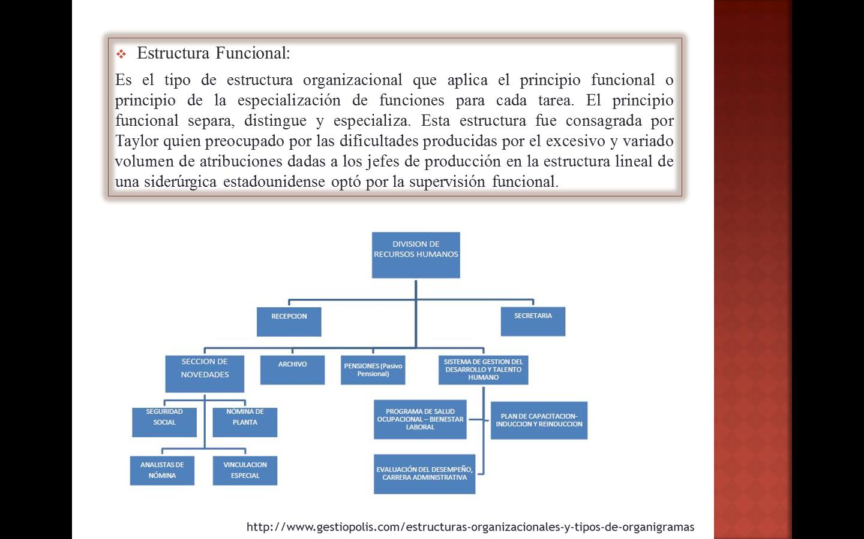 Tipos De Organigramas Estructura Funcional Organigrama