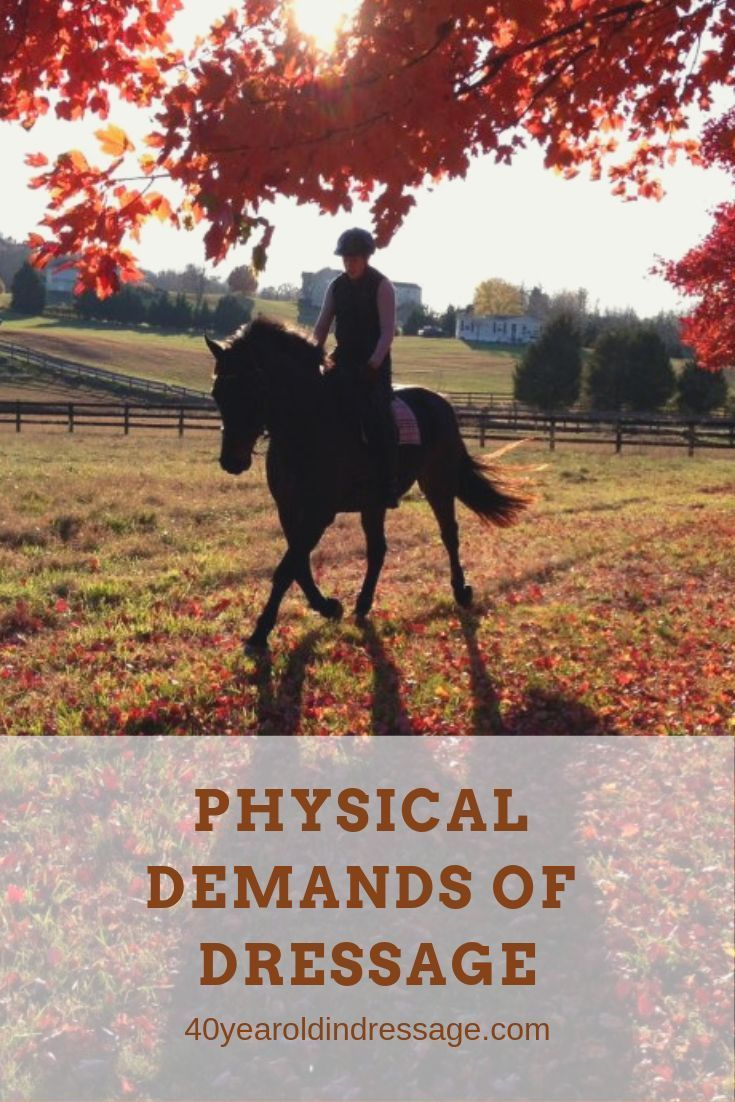 Physical Demands and Developing Fitness for Riding - Here Be Dragons  #Demands #Developing #Dragons...