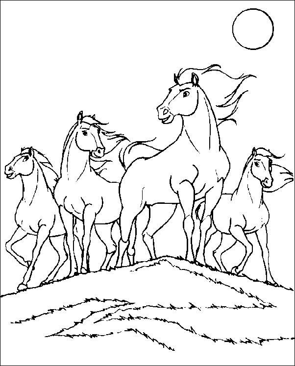 Coloring Pages Spirit The Wild Horse Picture 5 Horse Coloring Pages Animal Coloring Pages Horse Coloring