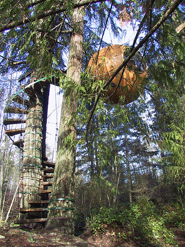treehouse hotel qualicum bc its easily on our route for vancouver island honeymoon
