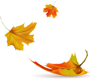Image Result For Drawn Blowing Leaf Image Leaves Jewelry
