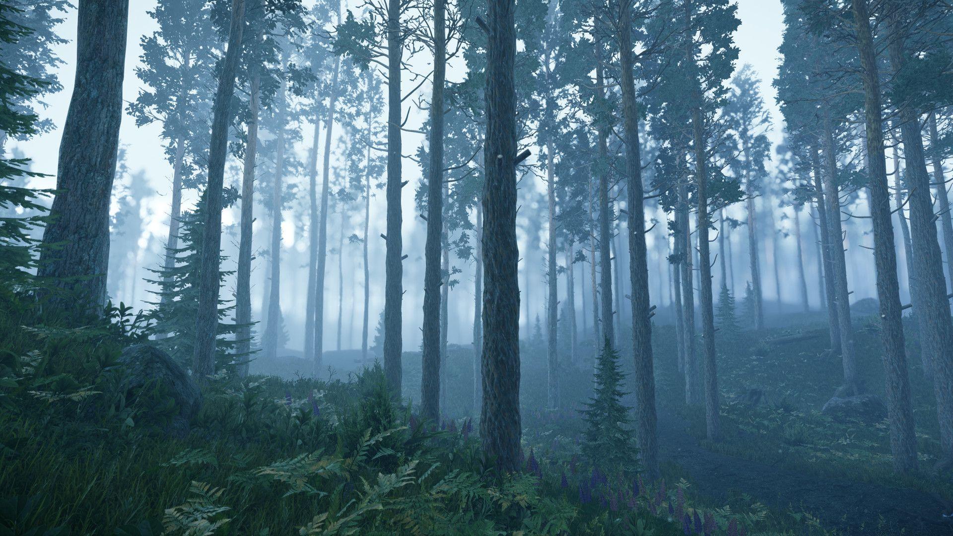 ArtStation - Misty Pine Forest (Cryengine 3), Michael Susha