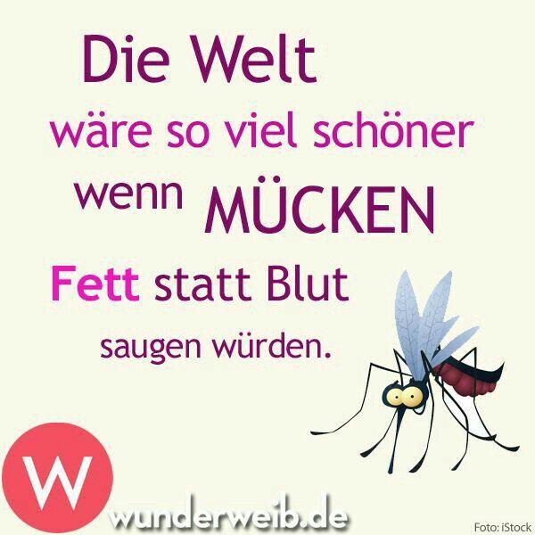 Pin von Hannes Lore auf Witzig | Lustige sprüche, Sprüche ...