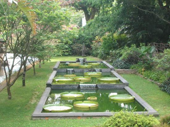 Photos Of Terra Nostra Garden Hotel Sao Miguel Hotel Images