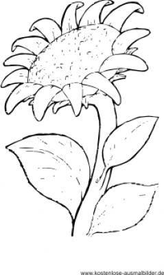 Ausmalbilder Blumen Blumen Ausmalen Blumen Ausmalen Malvorlagen Blumen Sonnenblumen Malen