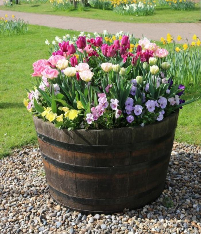 25 Clever DIY ideas to reuse old wine barrels in garden and yard decoration is part of Garden front of house, Porch flowers, Spring garden, Front porch flowers, Front yard landscaping, Flower landscape - 25 Clever DIY ideas to reuse old wine barrels in garden and yard decoration Brandy or wine barrels are made of mulberry, oak or acacia, they are strong and present in a lot of households  If you al…