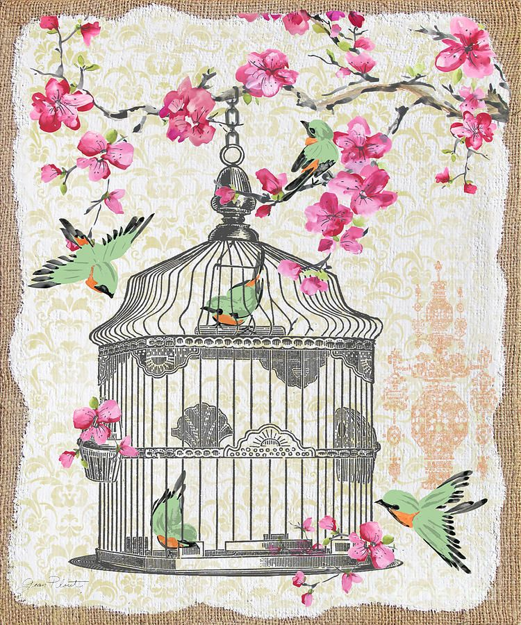 Birdcage With Cherry Blossoms-jp2613 Mixed Media