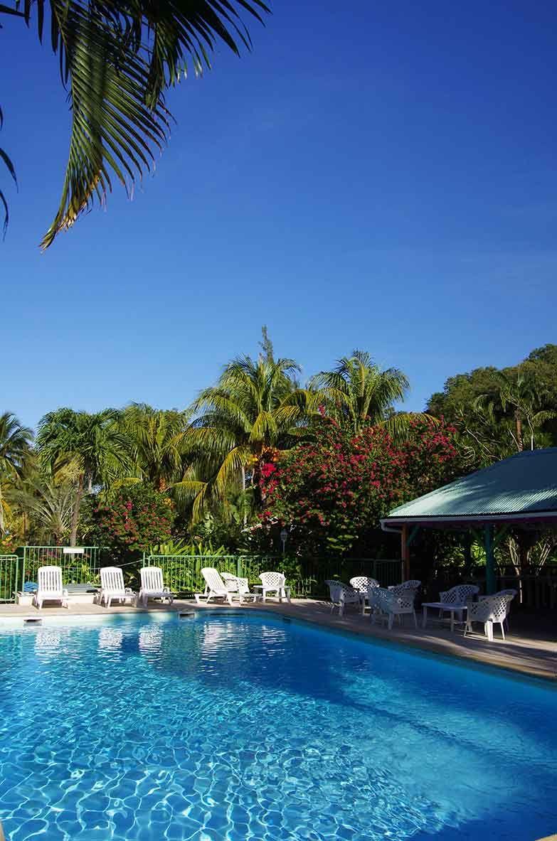 Piscine et mer des cara bes vous tes en vacances en - Bungalow guadeloupe piscine privee ...