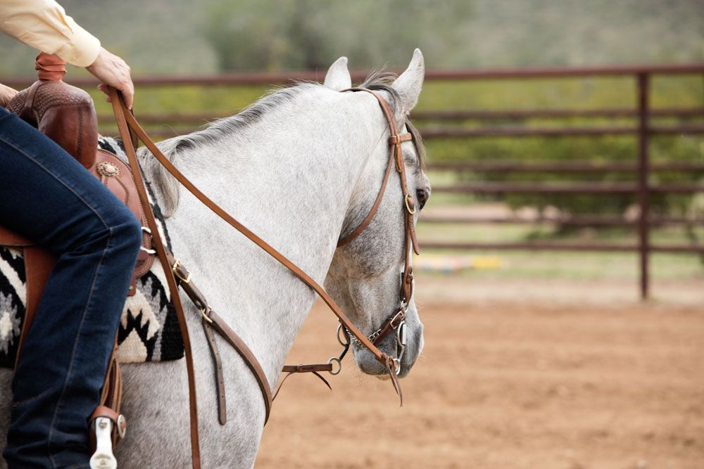 Trainer Julie Goodnight shares strategies for teaching any horse to neck rein.
