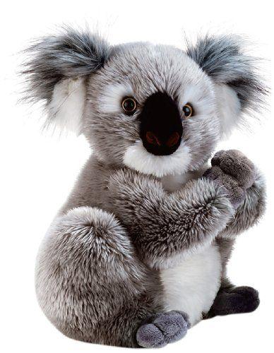 Plüschtier Koala Koline 22 cm: : Spielzeug