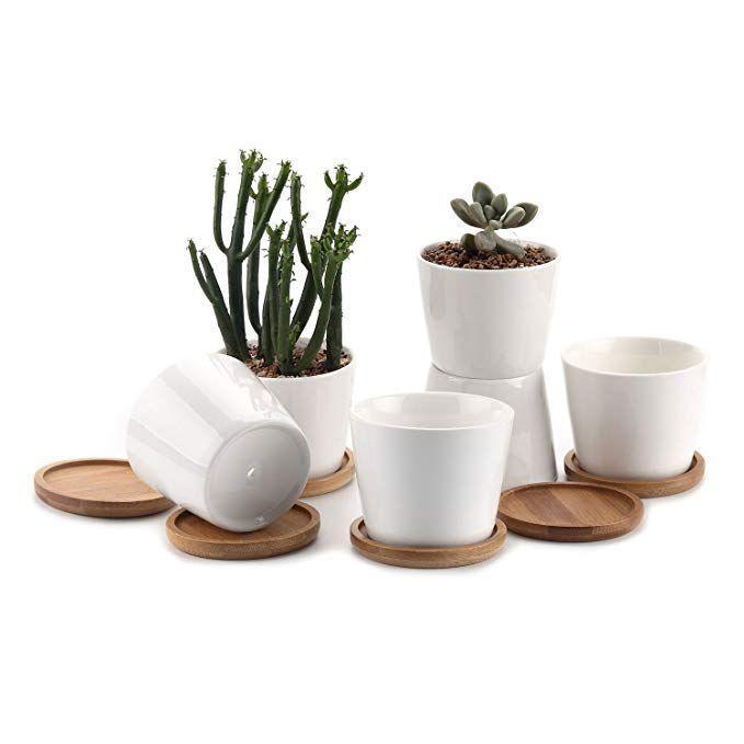 Amazon Com T4U 2 Inch Ceramic White Mini Square Succulent 400 x 300