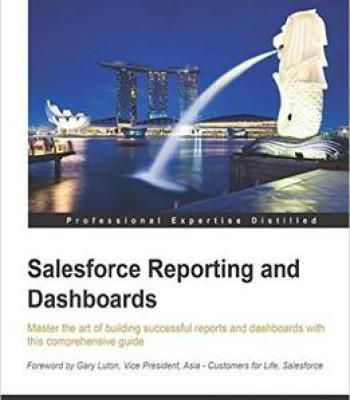 Salesforce Reporting And Dashboards Pdf Work Business Tips