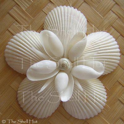 Seashell Snowflake Christmas Ornament Star Shell Flower See at The Shell Hut http://www.ebay.com/sch/shellhut/m.html?item=350905454270&ssPageName=STRK%3AMEUSX%3AIT&rt=nc&_dmd=2