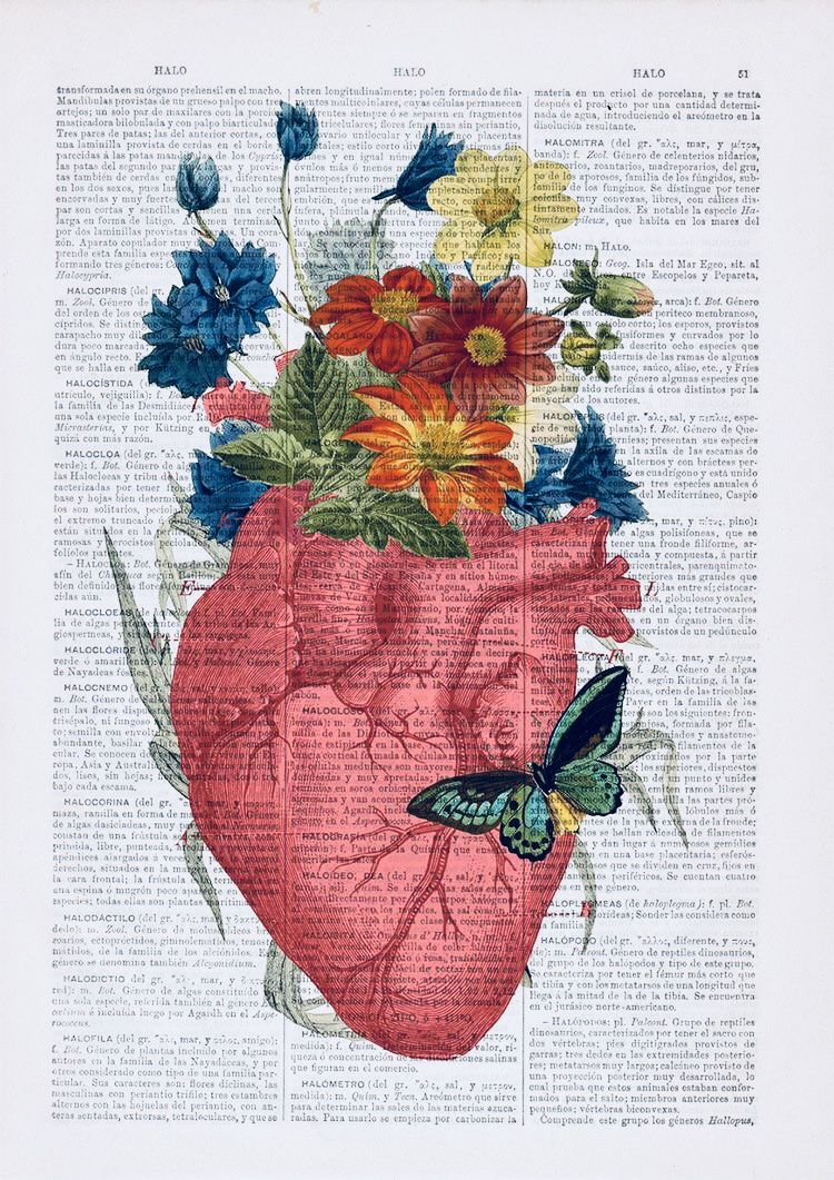 Pin by Alina D on Medicine | Pinterest | Wallpaper, Anatomy and ...