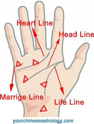 Triangle Sign On Palm Of Hand Meaning Palmistry Markings Palmistry Triangle Sign Palm Reading Charts