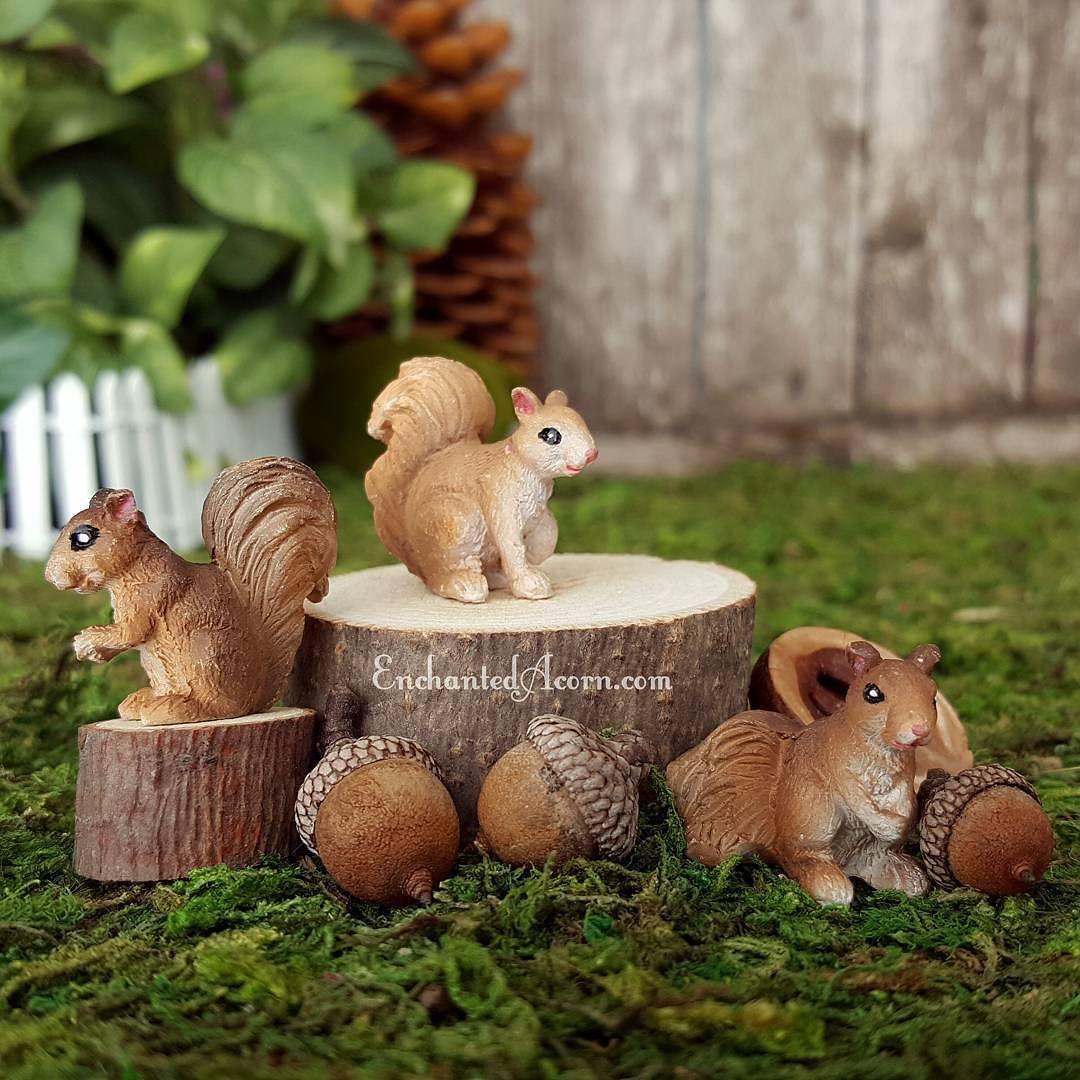 Fairy friends help gather acorns for baking tonight.  #enchantedacorn #fairygarden #fairygardens #miniaturegarden #minigarden #fairy #acorn #fairyfriends #etsylove #socute #woodland #gifts