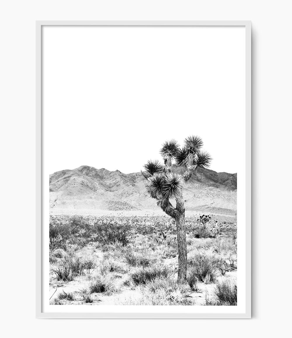 Joshua Tree Print Black And White Joshua Tree Tree Print Desert Photography