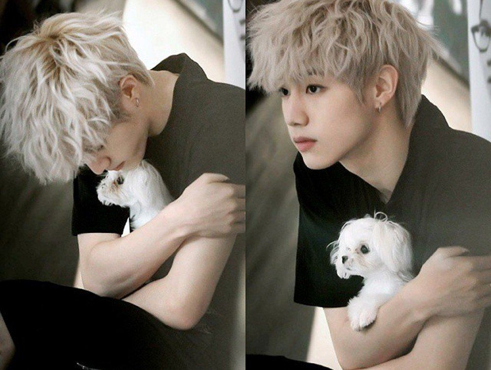 K Pop Idols Who Are Making Their Pets Insta Famous Got7 Got7 Mark Got7 Mark Tuan