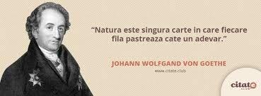 citate despre natura Imagini pentru citate despre natura | Vorbe de duh | Pinterest citate despre natura