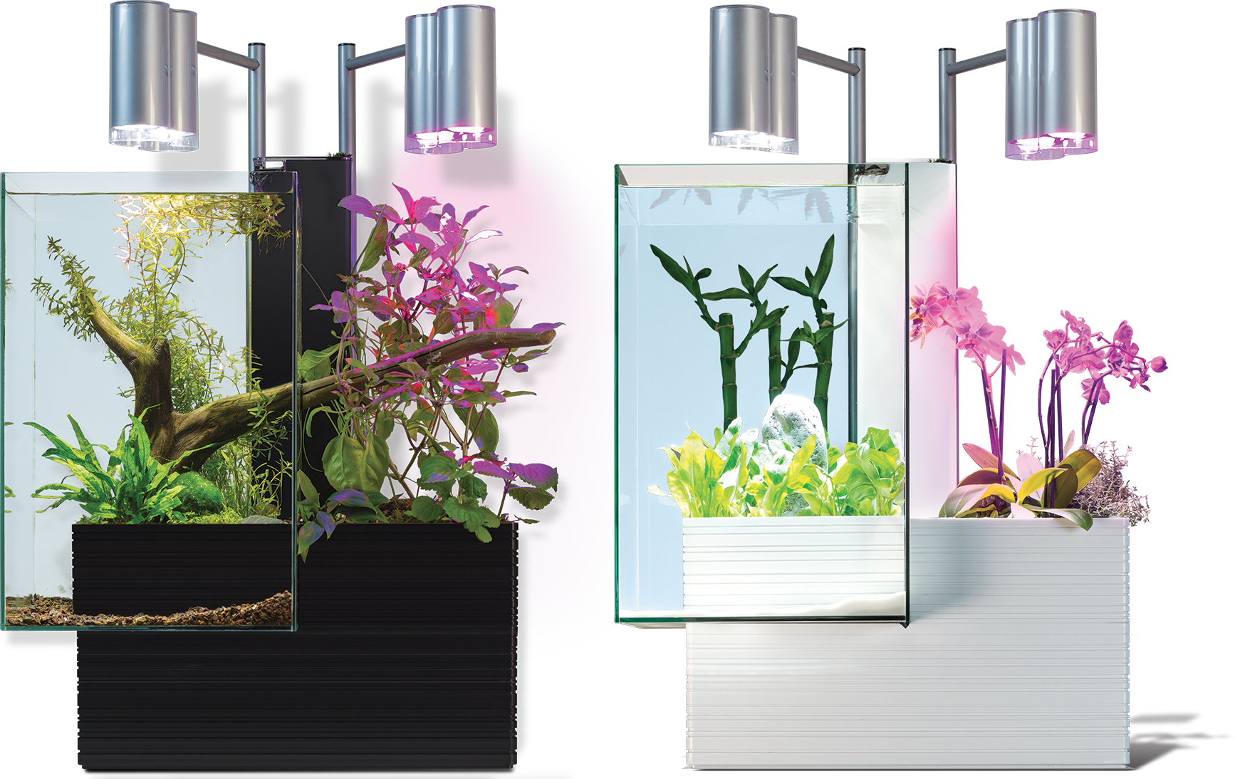 aquarium brio 35 noir animaux pinterest aquariums and gardens. Black Bedroom Furniture Sets. Home Design Ideas