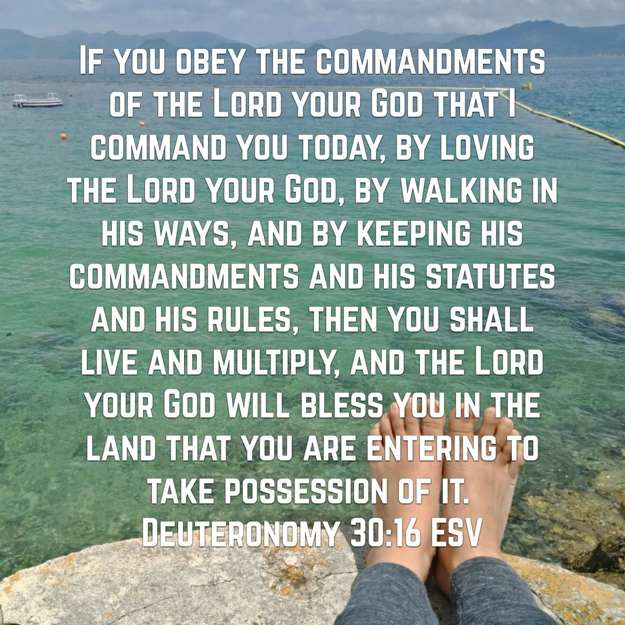 Pin By Dunkel Leben On 1 2AZX Our Favorite Scriptures