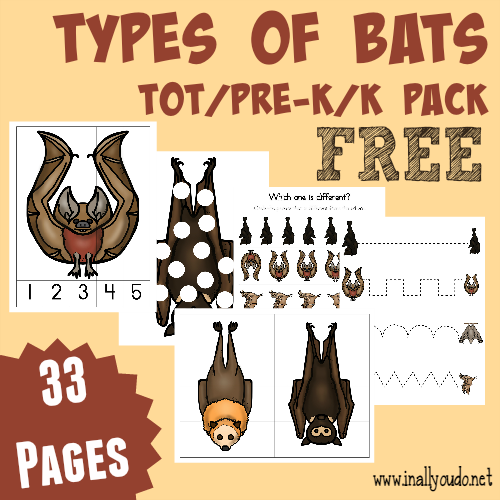 Dont miss this FREE Types of Bats TotPreKK Pack Includes 33 pages of puzzles prewriting dot marker pages and MORE