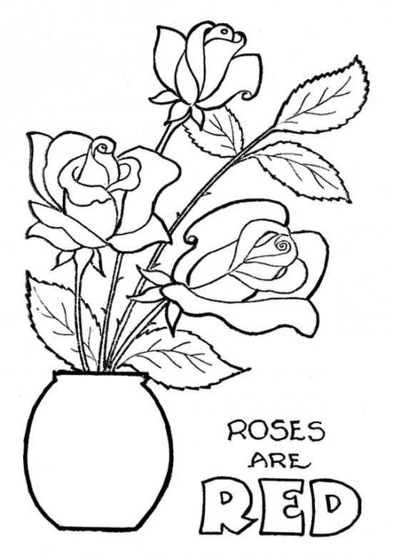 The Roses Are Red Flower Coloring Pages 550x778 Picture