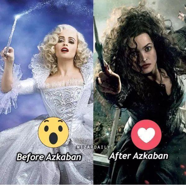Harry Potter Memes – Nur ein wahrer Potterhead kann verstehen (Teil 3) #memes #jokes #funny #humor – Memes