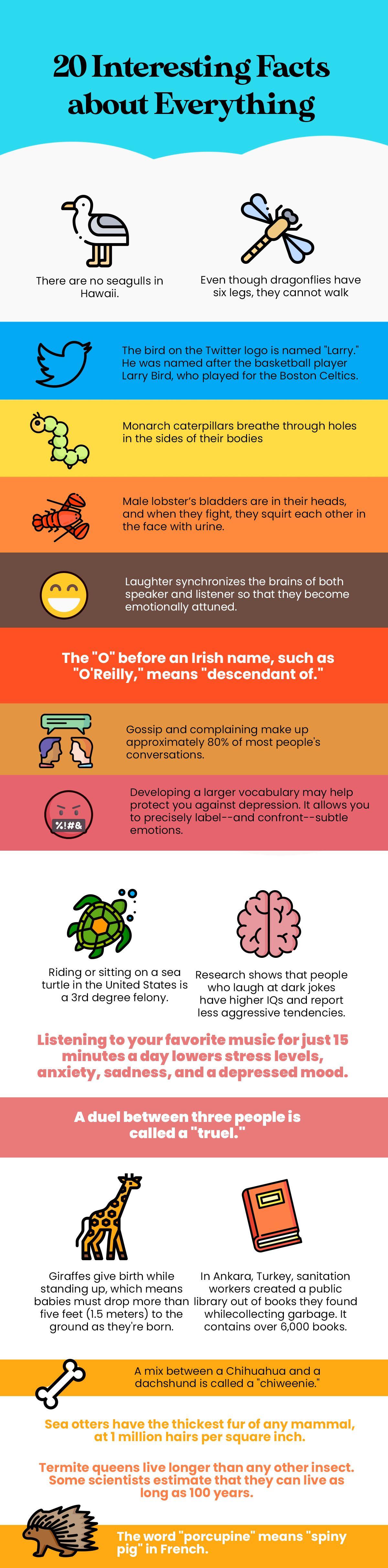 Pin On Interesting Infographics