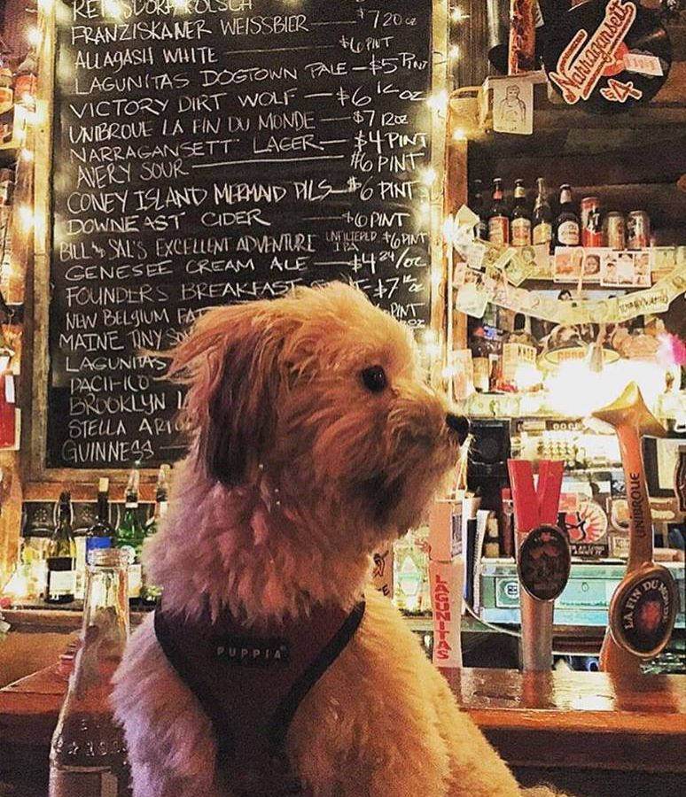 16 Dog Friendly Restaurants And Bars To Bring A Pup Dog Friends Nyc Dogs Dogs