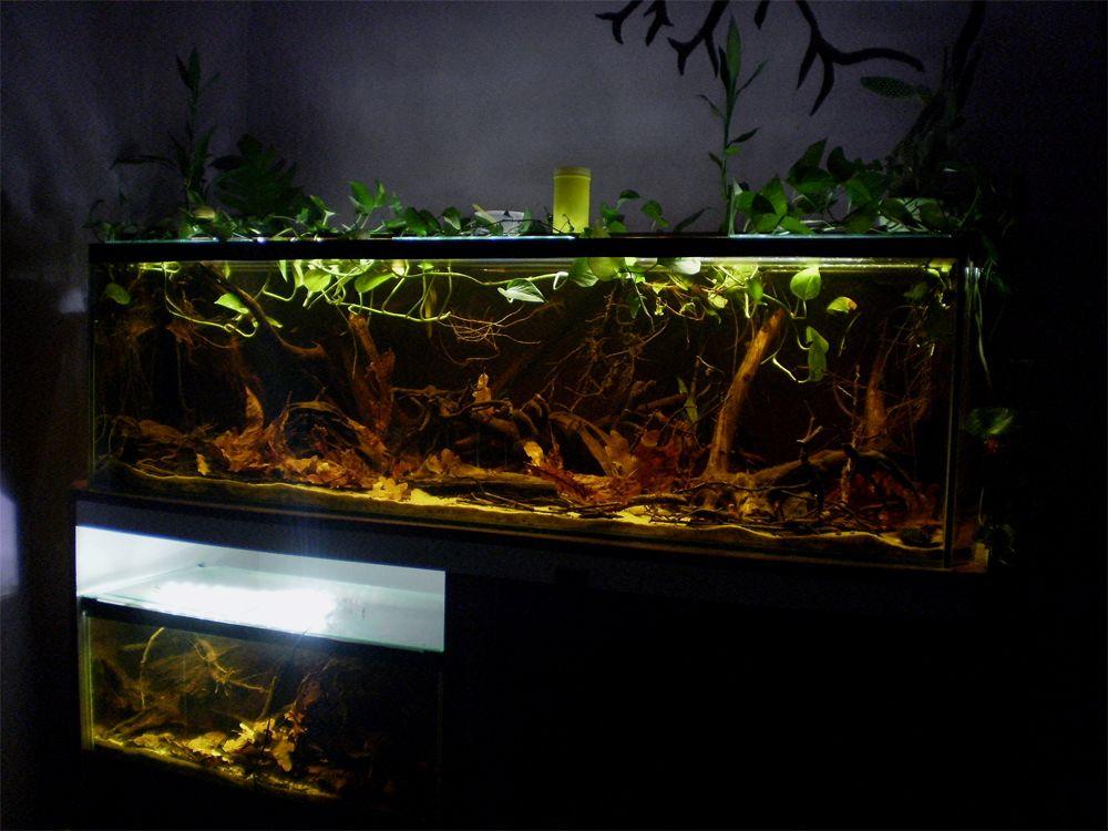 Aquarium wohnzimmer ~ Aquarium design wohnzimmer wohnideen schrank eingebaut fishies