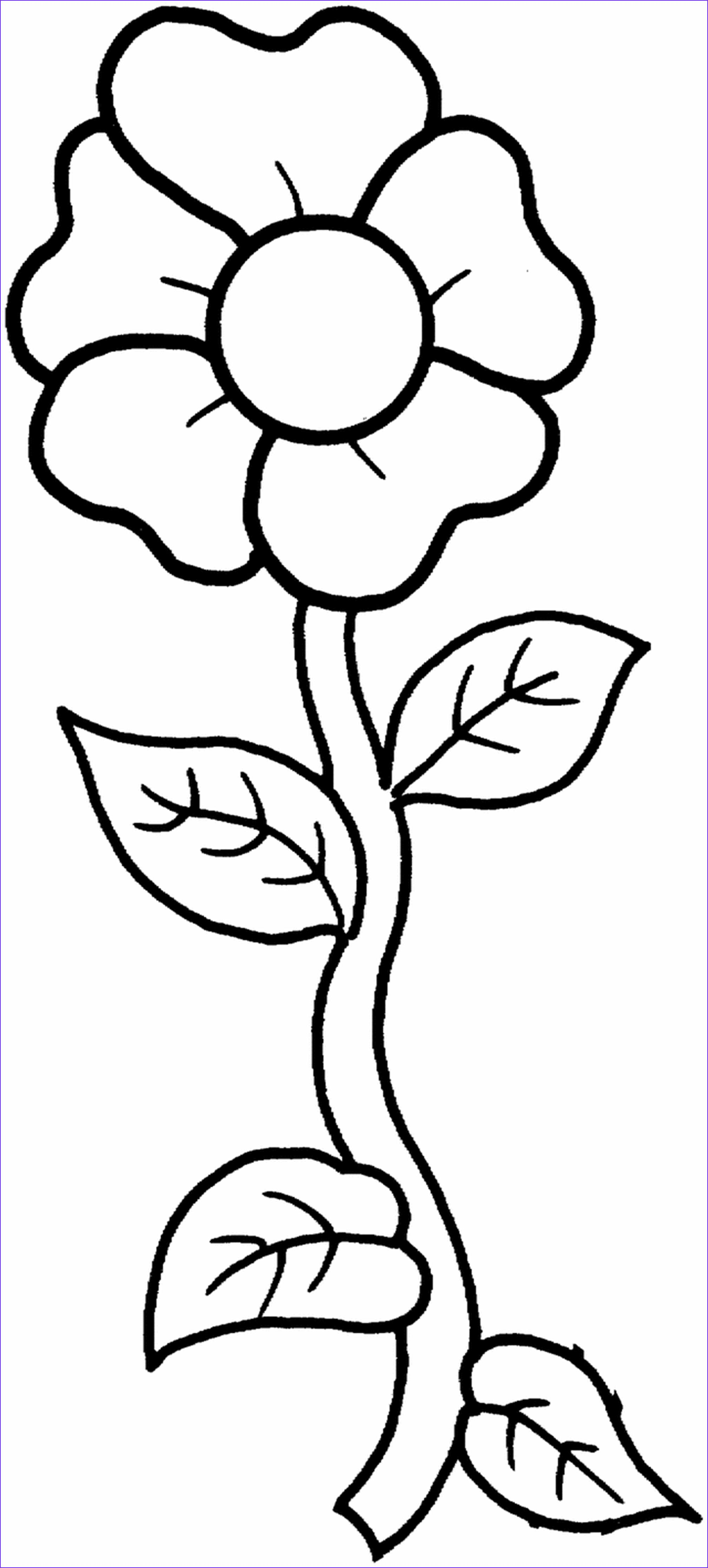 Free Printable Flower Coloring Pages For Kids Best  Flower