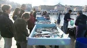 poissonnier vieux port