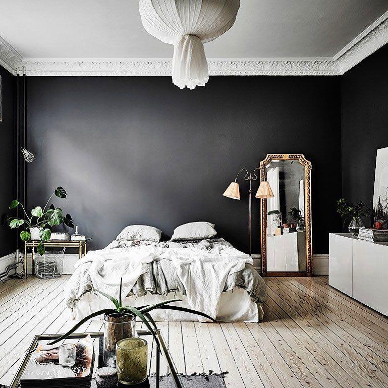 Chambre Design Mur De Couleur Noir Moulure Au Plafond Parquet Bois