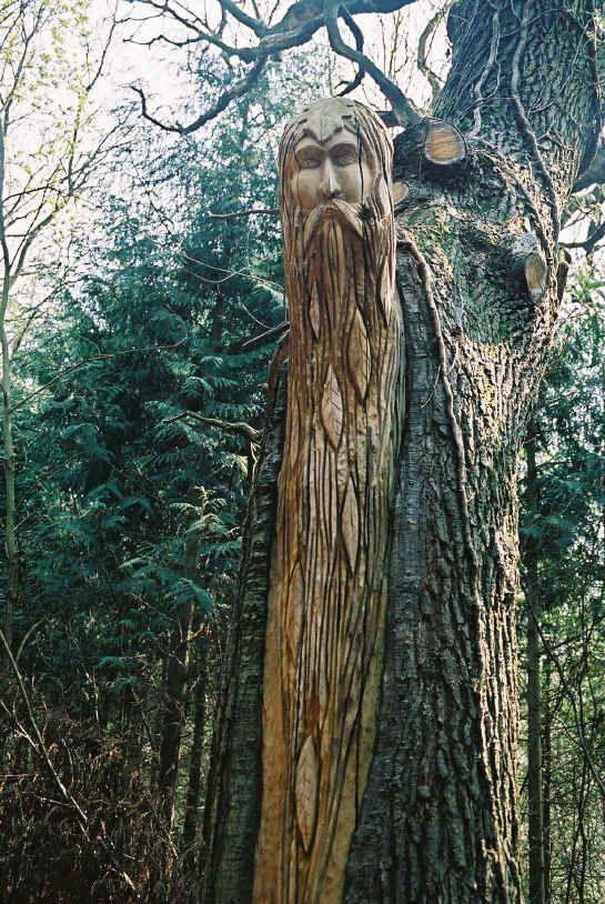 Green man wood carving pinterest bois sculpté