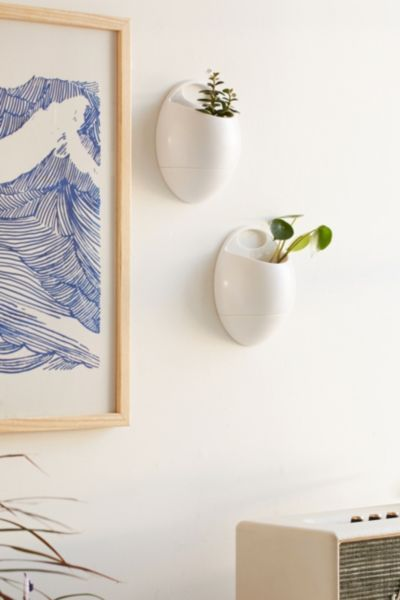 Eco Pod Wall Planter Set - Urban Outfitters