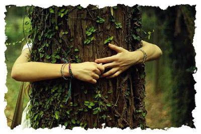 La Esencia de la Naturaleza - Guerrero Espiritual