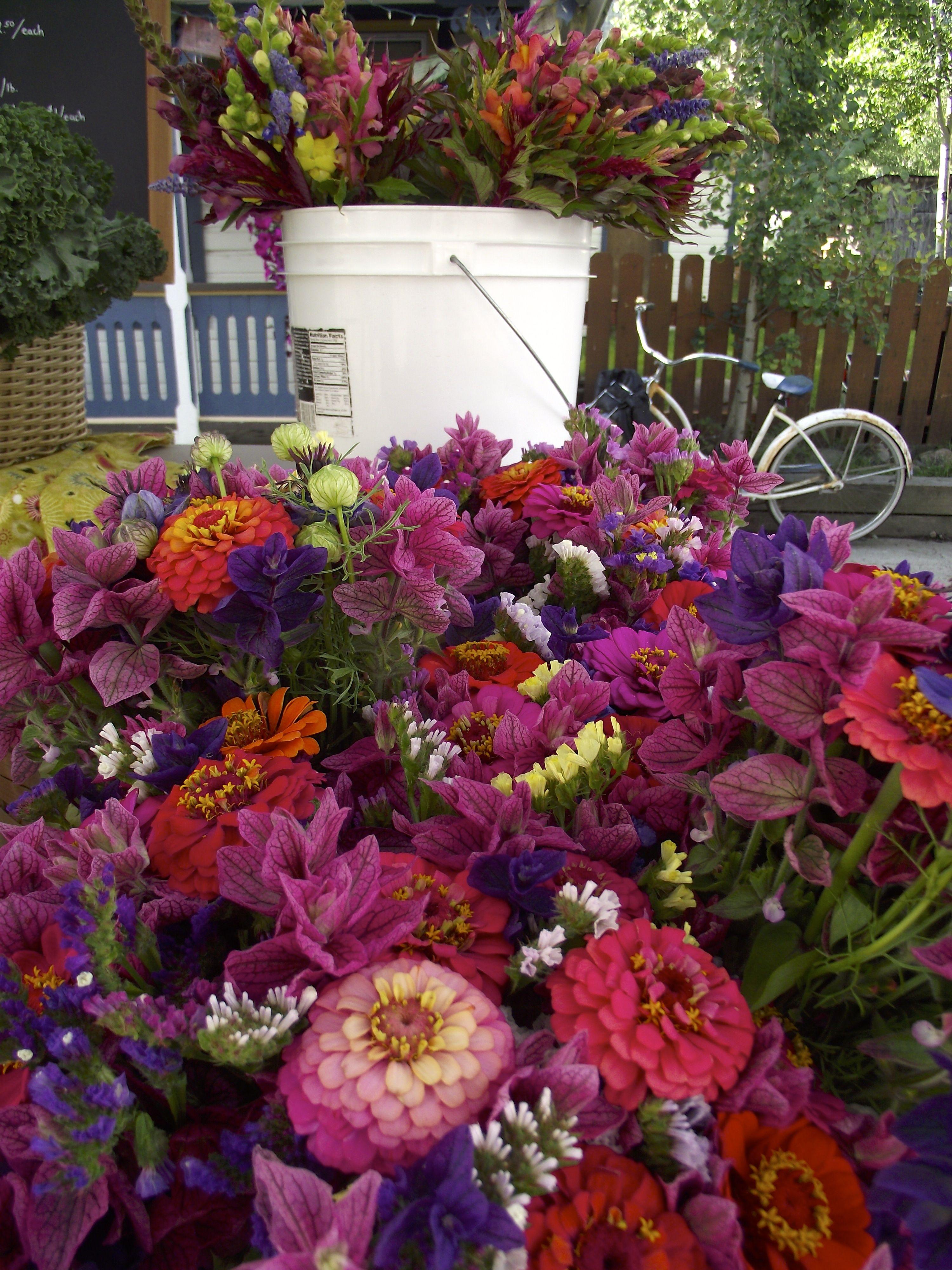 Farm flower bouquets flowers bouquet flowers farmer