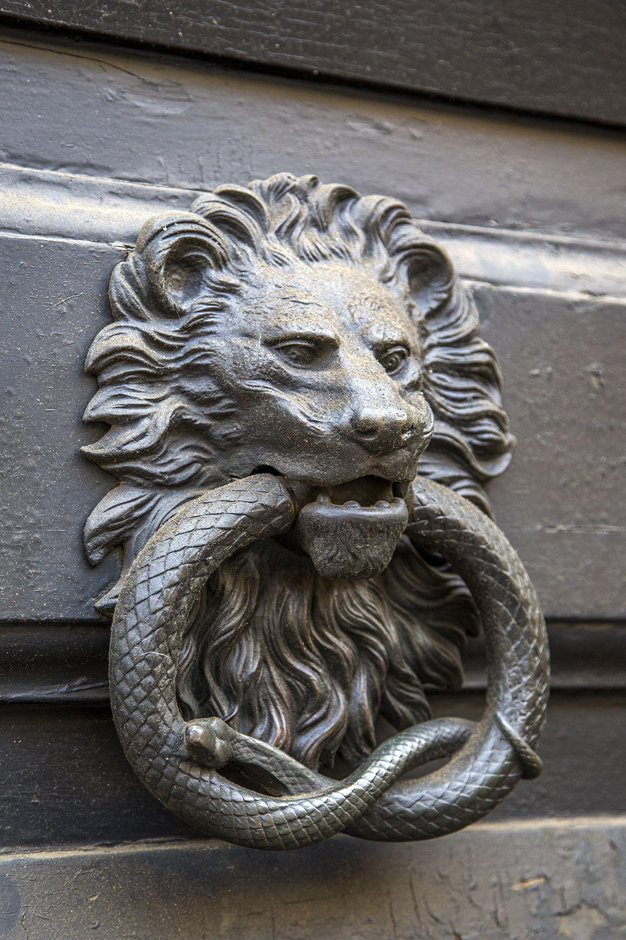 Love this door knocker pinterest door handles and doors