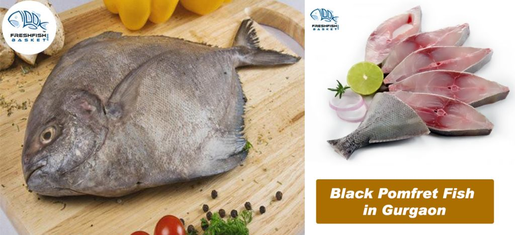 Keep Your Body Fit And Mind Healthy Order Black Pomfret Fish In Gurgaon Online Pomfret Fish Fish Chicken Fish