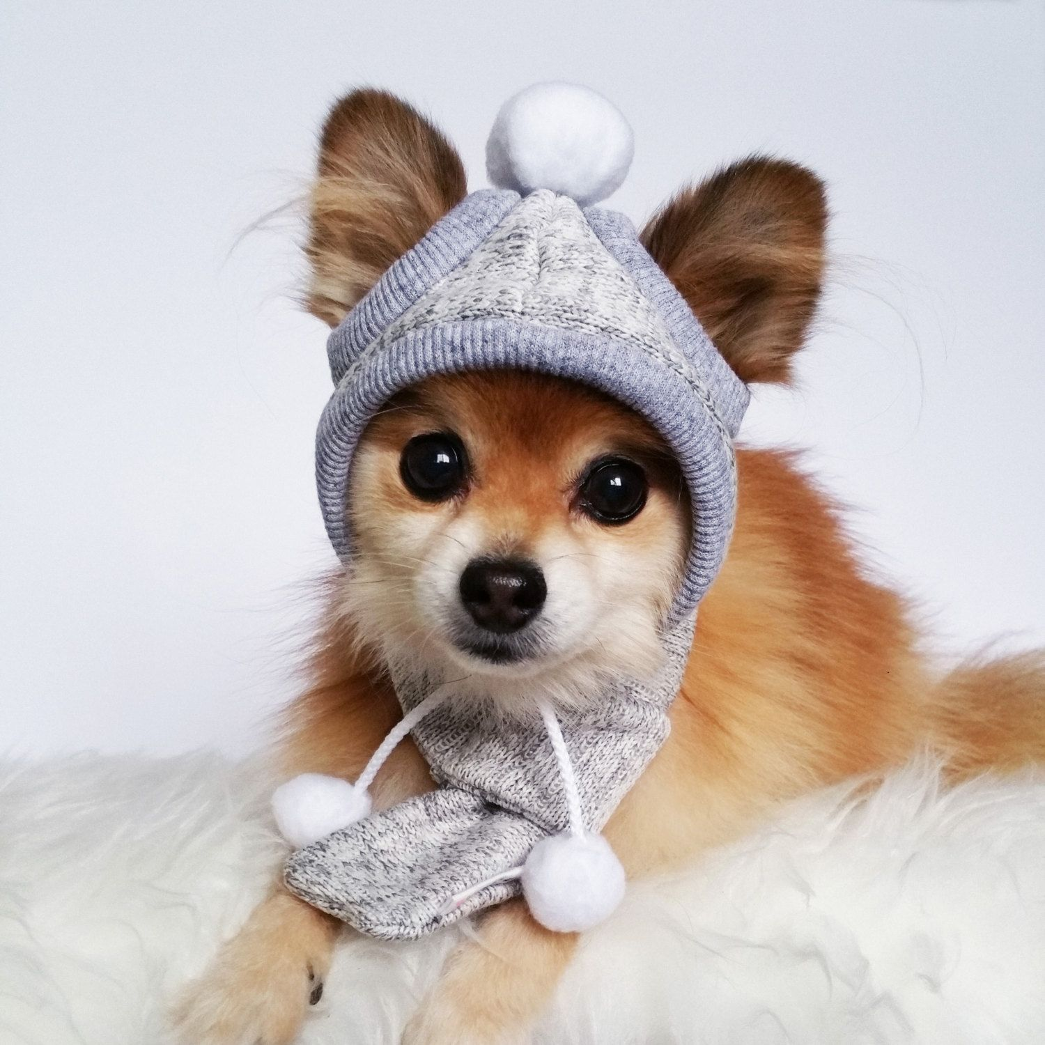 Dogs Winter Hat Scarf Set Handmade Dog Hats Dog Caps Etsy Dog Hat Handmade Dog Puppy Accessories