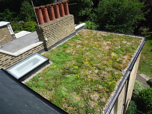 Best Green Roof System Med Bilder 400 x 300
